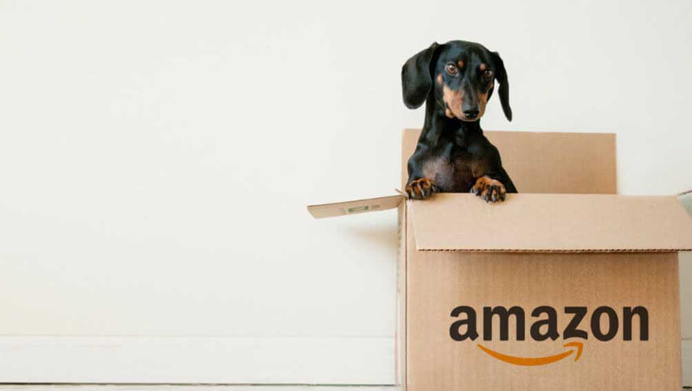 Don't wait till it's too late: Amazon's influence on eCommerce